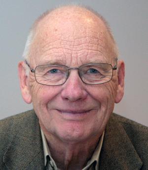 Veiselskapet er et langt skritt i riktig retning, men ikke langt nok til å sikre en utbyggingstakt i samsvar med samfunnets behov, sier professor emeritus Dag Bjørnland.
